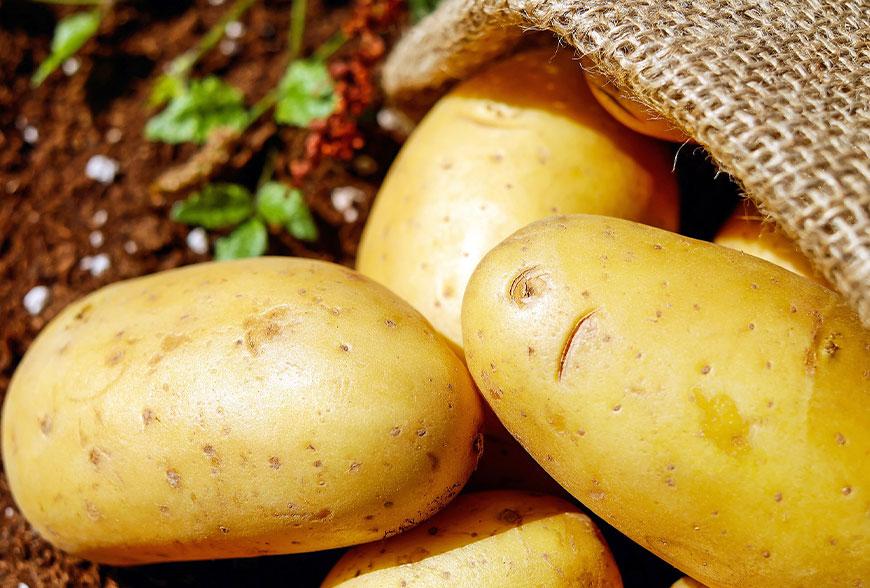 L' importanza della patata e la sua storia socio economica